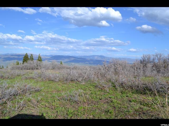 400 Porcupine Loop, Wanship, UT 84017 (MLS #1513384) :: High Country Properties