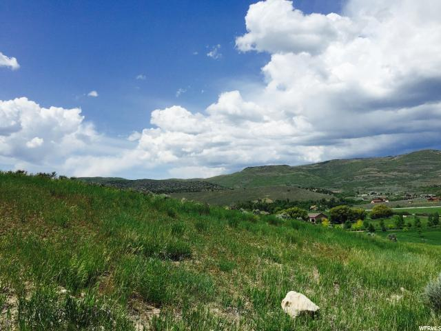 3211 E Lindsay Spring Rd S, Heber City, UT 84032 (MLS #1515232) :: High Country Properties