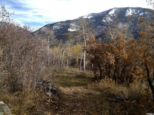 141 Ute Trail Rd, Oakley, UT 84055 (#1517530) :: Eccles Group