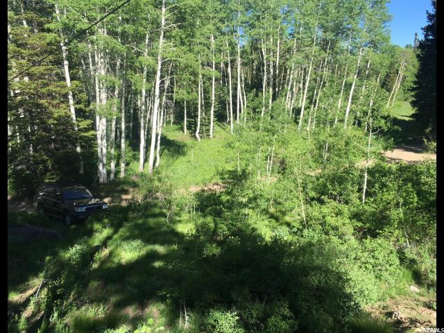 111 111, Midway, UT 84049 (MLS #1518455) :: High Country Properties