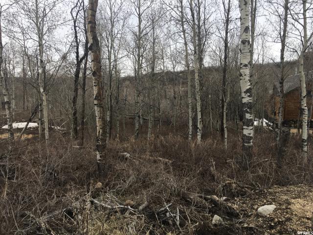 9859 E Deer Creek Drive Dr, Heber City, UT 84032 (MLS #1519165) :: High Country Properties