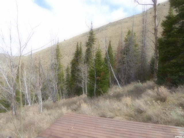 Address Not Published, Scofield, UT 84526 (#1519249) :: Colemere Realty Associates