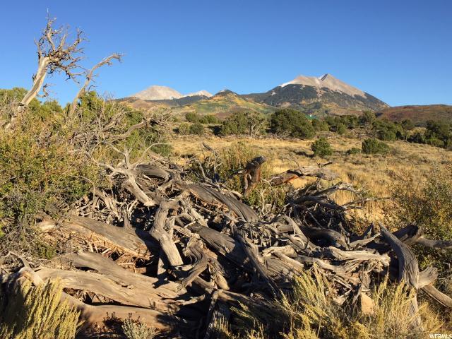 2 Brumley Ridge Ranch Rd, Moab, UT 84532 (#1519453) :: Exit Realty Success