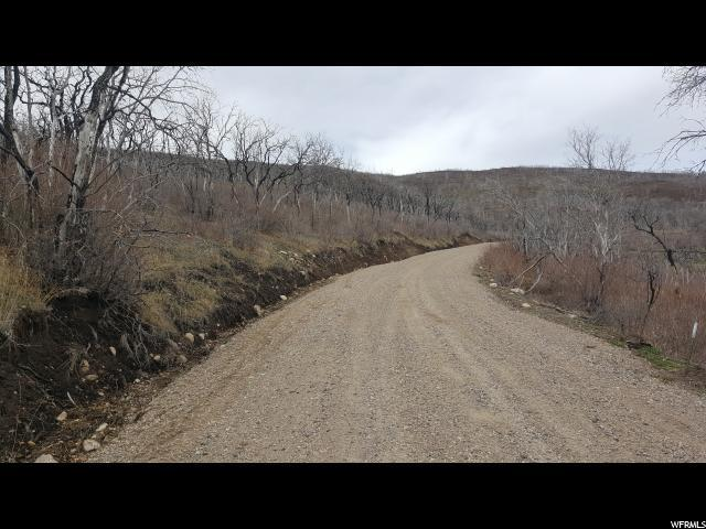 1 D Indian Ridge Dr E, Indianola, UT 84629 (#1519701) :: The Perry Group