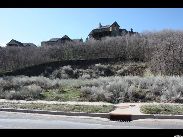 1492 E Meadow Bluff Ln S, Draper, UT 84020 (#1520371) :: goBE Realty