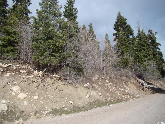 14165 E Thads Peak Dr, Fairview, UT 84629 (#1520950) :: Exit Realty Success