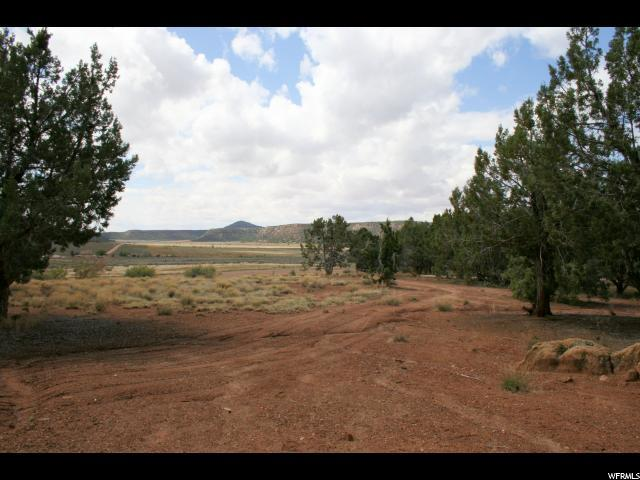 1144 W Foothill Dr, Apple Valley, UT 84737 (#1521670) :: Colemere Realty Associates