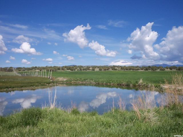 Address Not Published, Spring City, UT 84662 (#1525126) :: Colemere Realty Associates