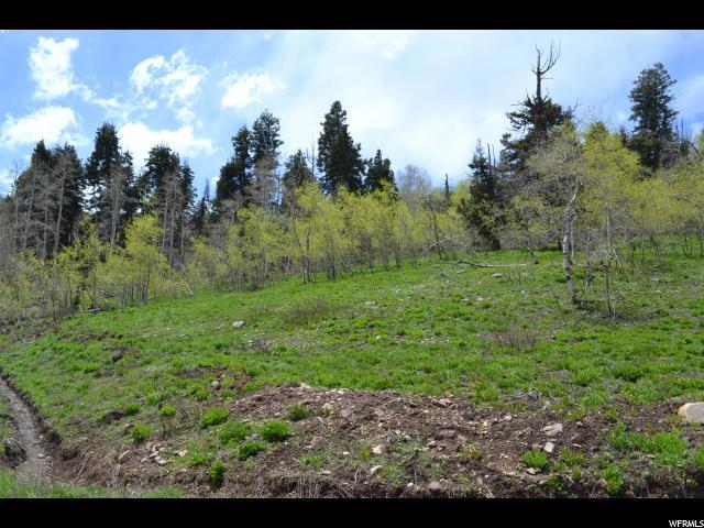 2052 Uinta View Rd, Wanship, UT 84017 (#1525265) :: Big Key Real Estate