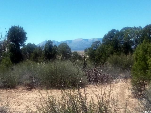 Address Not Published, Monticello, UT 84535 (#1525271) :: Colemere Realty Associates
