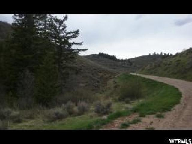 13 Mill Hollow Rd, Montpelier, ID 83254 (#1526175) :: Colemere Realty Associates