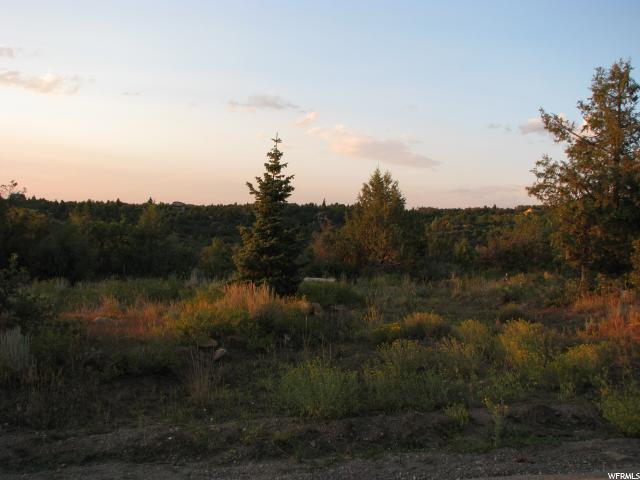 58 Meadows Pcr, Mount Pleasant, UT 84647 (#1526494) :: Big Key Real Estate