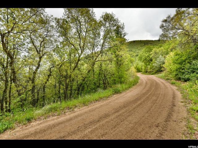 1138 Aspen, Midway, UT 84049 (#1528237) :: Bustos Real Estate | Keller Williams Utah Realtors