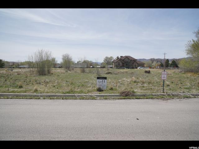 1657 W Oak River Ct, Riverton, UT 84065 (#1528373) :: Big Key Real Estate