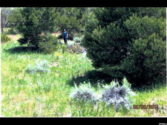 236 Goshute Reservation, Ibapah, UT 84034 (#1529003) :: The Fields Team