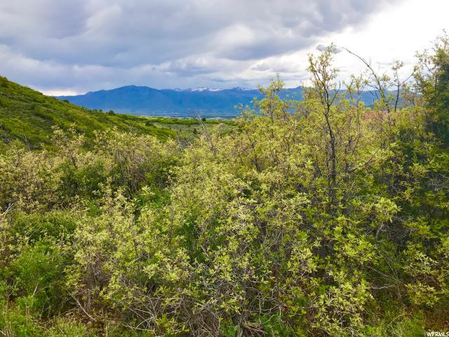 7386 E Valley View Drive Dr, Heber City, UT 84032 (MLS #1529164) :: High Country Properties