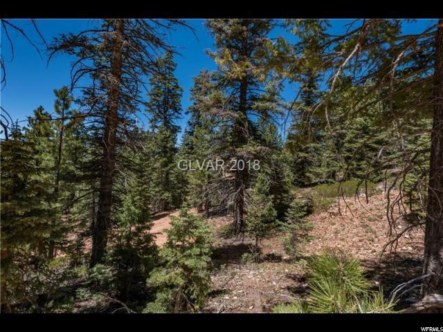 460 N Mountain Rd, Duck Creek Village, UT 84762 (#1531040) :: Exit Realty Success
