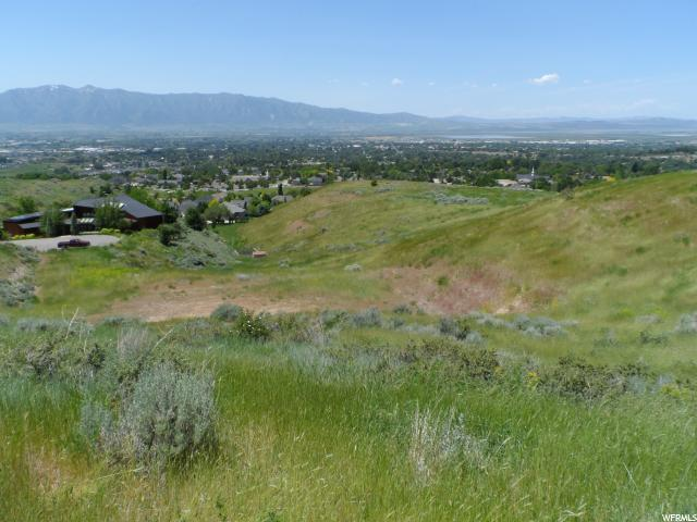 1647 E Quail Canyon Dr, Logan, UT 84321 (#1531174) :: Exit Realty Success