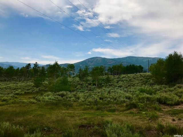 684 Conifer Dr, Oakley, UT 84055 (MLS #1538163) :: High Country Properties