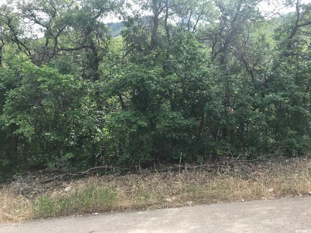 875 S Skylake E, Woodland Hills, UT 84653 (#1539530) :: Eccles Group