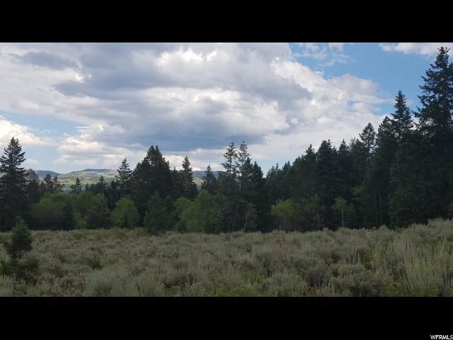 22822 E Snowbird S, Spanish Fork, UT 84660 (#1540085) :: Exit Realty Success