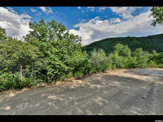 1133 N Maple Ln W, Midway, UT 84049 (MLS #1540159) :: High Country Properties