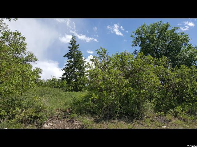 699 B Lodge Dr, Fairview, UT 84629 (#1540268) :: Bustos Real Estate | Keller Williams Utah Realtors