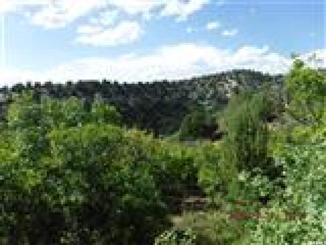 13085 E Juniper N, Fairview, UT 84629 (#1542812) :: Bustos Real Estate | Keller Williams Utah Realtors