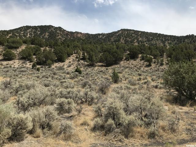 4695 S 6 MILE CANYON Rd, Sterling, UT 84665 (#1543620) :: goBE Realty