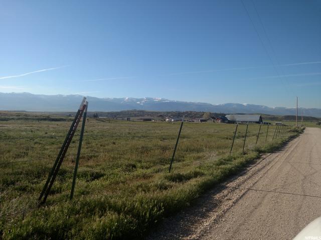 17749 Race Track Rd - Photo 1