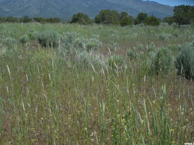 12000 N Whiskey Creek Rd. E, Holden, UT 84636 (#1544059) :: The Fields Team
