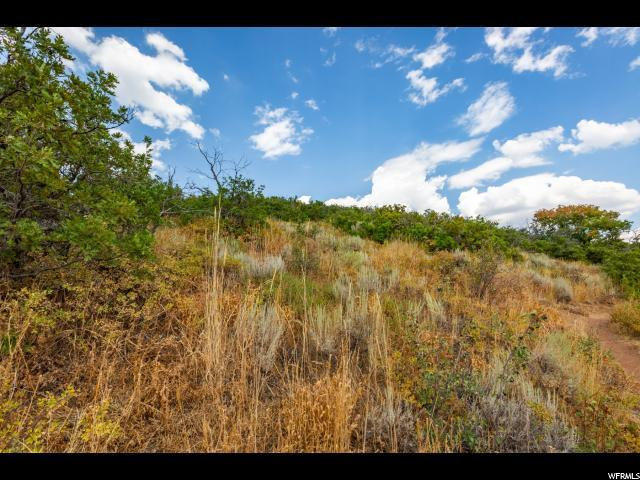 7815 Tall Oaks Dr, Park City, UT 84098 (MLS #1548371) :: High Country Properties