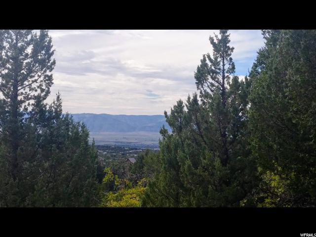 2 Vista, Mount Pleasant, UT 84647 (#1552430) :: Colemere Realty Associates