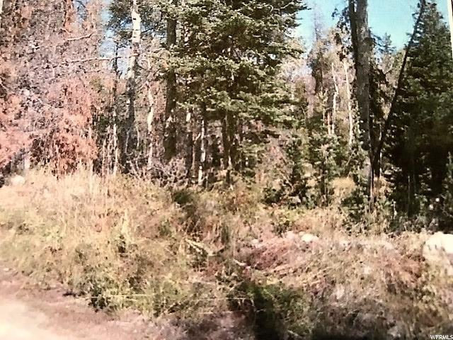 4967 Alpine Cir, Kamas, UT 84036 (MLS #1557981) :: High Country Properties