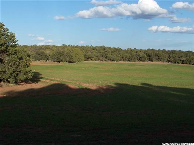 26 E Elkmeadows, Monticello, UT 84535 (#1559654) :: Big Key Real Estate