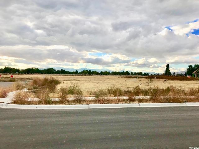 1041 E 1040 N, American Fork, UT 84003 (#1559849) :: Bustos Real Estate | Keller Williams Utah Realtors