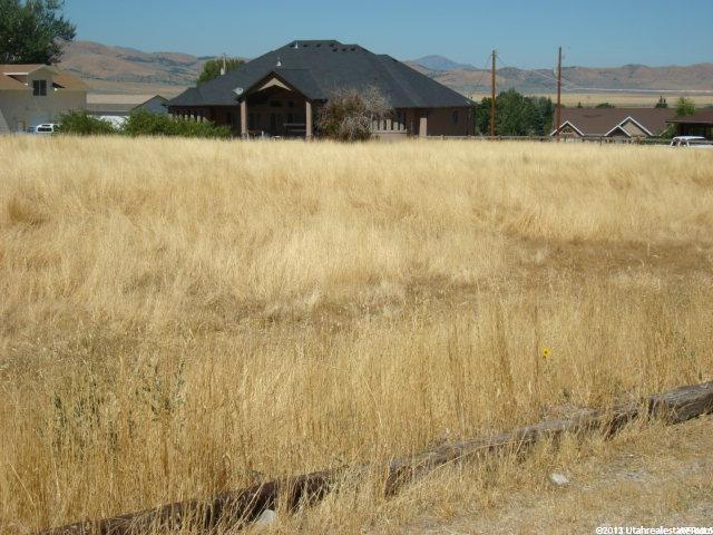 350 E 150 N, Mona, UT 84645 (#1560151) :: Big Key Real Estate