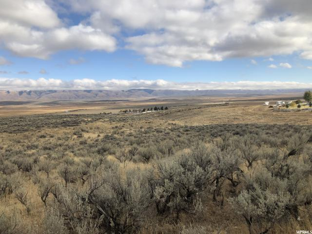 400 Westward Dr, Cokeville, WY 83114 (#1560577) :: Colemere Realty Associates
