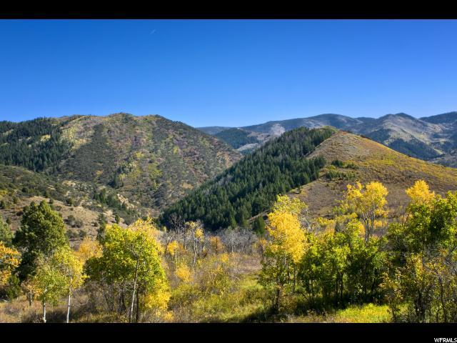 5980 N Maple Ridge Trl, Oakley, UT 84055 (MLS #1560776) :: High Country Properties