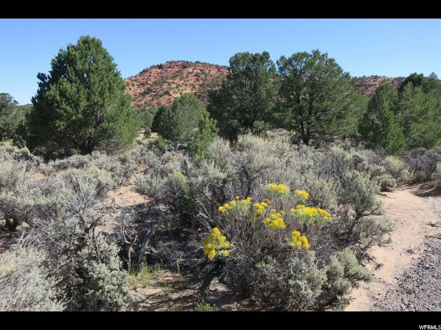 1850 Highway 12 St, Grover, UT 84773 (#1561084) :: Colemere Realty Associates