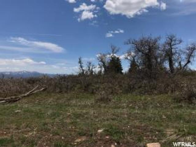 2231 Porcupine Cir, Wanship, UT 84017 (MLS #1564076) :: High Country Properties