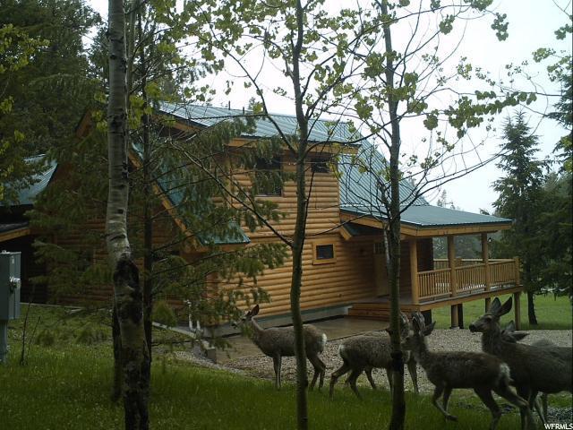 13431 S Raccoon #2, Lava Hot Springs, ID 83246 (MLS #1565778) :: Lawson Real Estate Team - Engel & Völkers