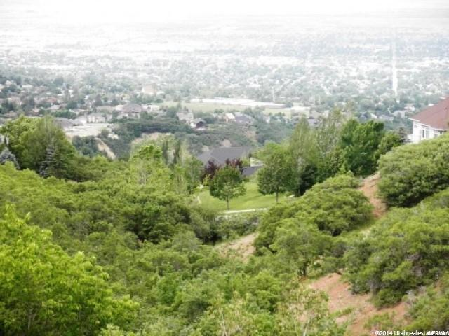 1868 E Stone Hollow Dr, Bountiful, UT 84010 (MLS #1566367) :: Lawson Real Estate Team - Engel & Völkers