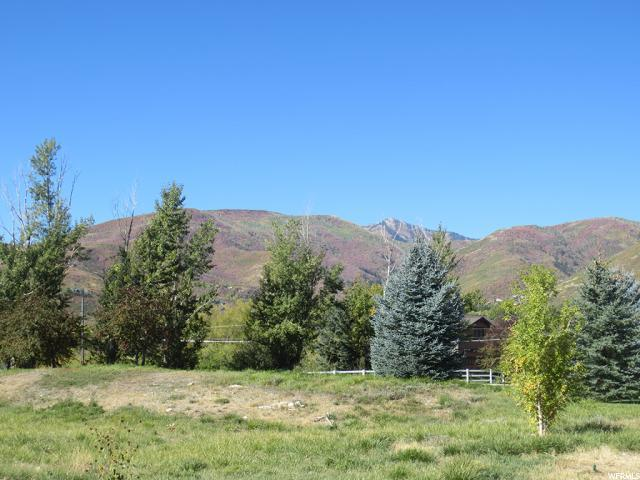 309 W Burnts Field Rd, Midway, UT 84049 (#1566786) :: The One Group