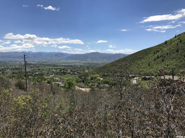 1259 Hillside Dr, Midway, UT 84049 (MLS #1566911) :: High Country Properties