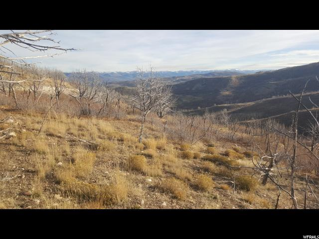 47 Porcupine Loop, Indianola, UT 84629 (#1568778) :: Colemere Realty Associates