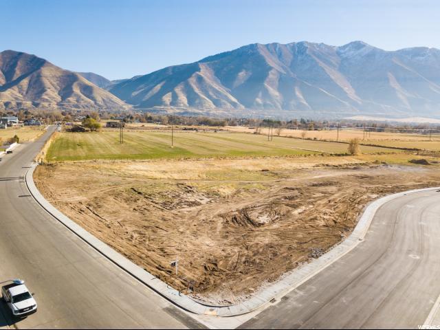 754 N 1040 W, Mapleton, UT 84664 (#1568793) :: The Utah Homes Team with iPro Realty Network