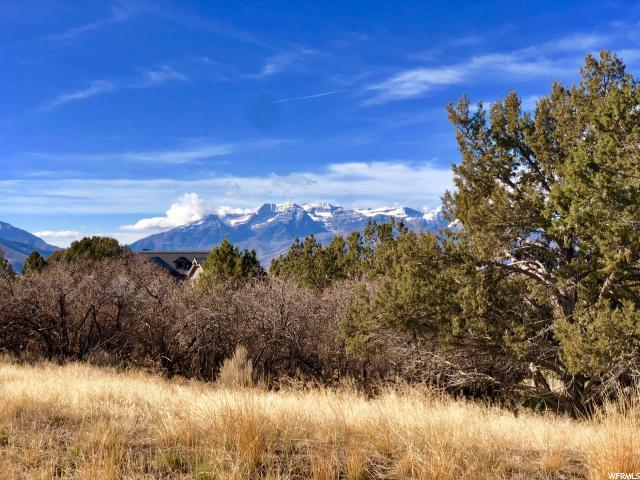 735 N Copper Belt Dr (Lot 735), Heber City, UT 84032 (#1569300) :: The One Group