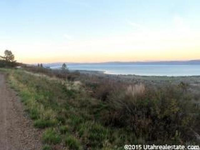 3151 S Panorama Dr, Garden City, UT 84028 (#1569753) :: Colemere Realty Associates