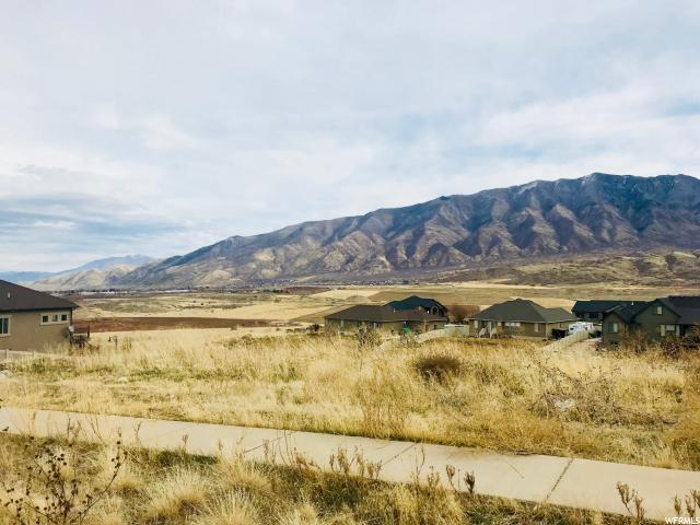 1173 Valley View Dr, Santaquin, UT 84655 (#1569805) :: Red Sign Team